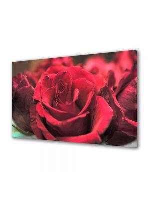 Tablou Canvas Flori Obsesie rosie