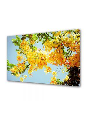 Tablou Canvas Luminos in intuneric VarioView LED Flori Multe flori galbene