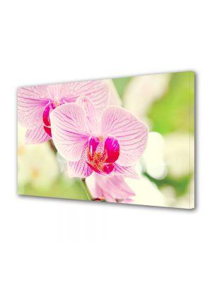 Tablou VarioView MoonLight Fosforescent Luminos in intuneric Flori Orhidee luminoasa