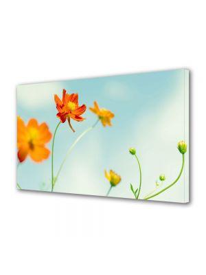 Tablou VarioView MoonLight Fosforescent Luminos in intuneric Flori Flori perfecte