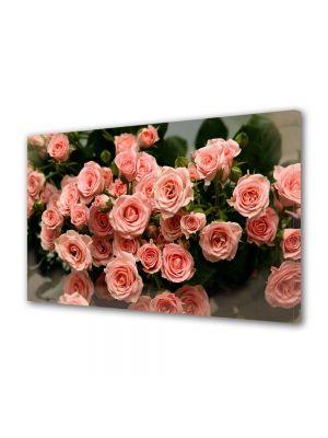 Tablou Canvas Flori Muguri de trandafiri roz