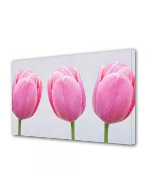 Tablou Canvas Flori Trei lalele roz