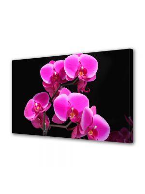 Tablou Canvas Flori Orhidee Roz