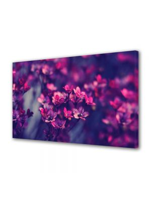 Tablou Canvas Luminos in intuneric VarioView LED Flori Flori salbatice violet