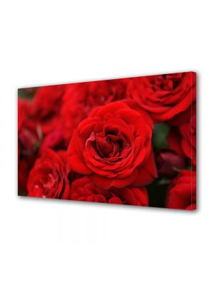 Tablou Canvas Flori Buchete de trandafiri