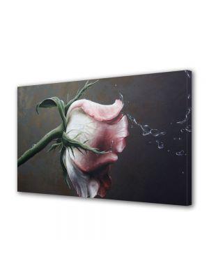 Tablou Canvas Flori Trandafir de poveste