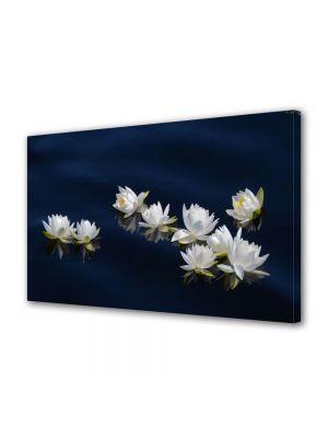Tablou Canvas Flori Flori pe apa