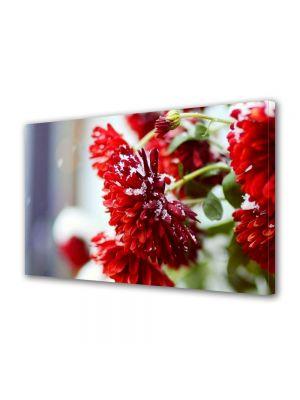 Tablou Canvas Flori Flori rosii ninse