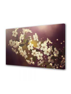 Tablou Canvas Flori Crenguta alba