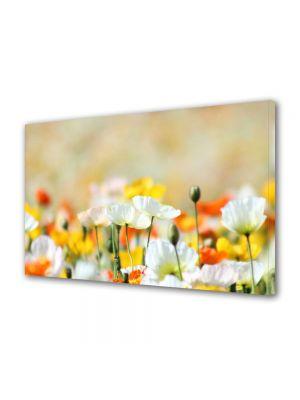 Tablou Canvas Flori Flori frumos colorate