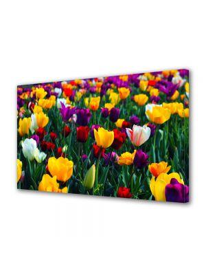 Tablou Canvas Flori Paleta de culori