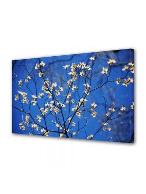 Tablou Canvas Luminos in intuneric VarioView LED Flori Crenguta cu flori albe