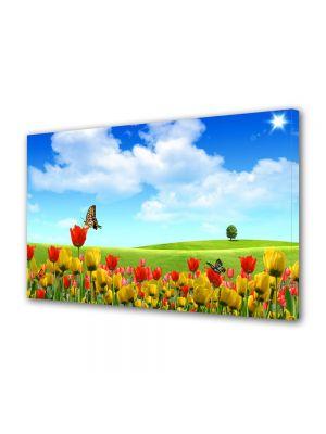 Tablou Canvas Flori Fluturi si flori