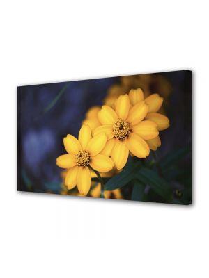 Tablou Canvas Flori Floricele galbenele