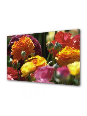 Tablou Canvas Flori Culori pale