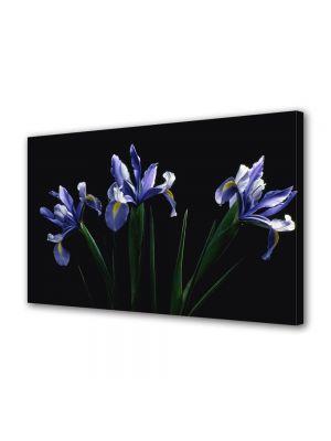 Tablou Canvas Luminos in intuneric VarioView LED Flori Flori mov