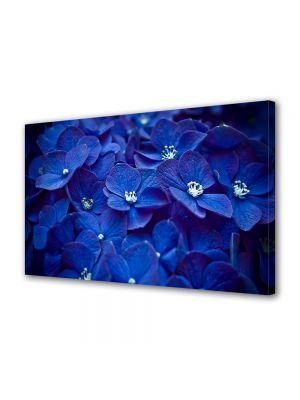 Tablou Canvas Flori Flori albastre