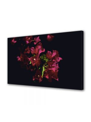 Tablou Canvas Luminos in intuneric VarioView LED Flori Floricica