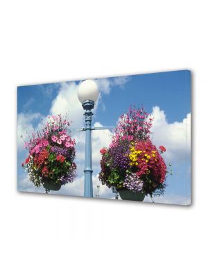 Tablou Canvas Flori Aranjamente florale stradale