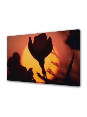 Tablou Canvas Luminos in intuneric VarioView LED Flori Apus