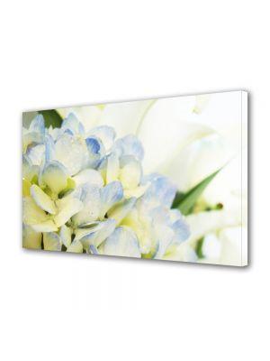 Tablou Canvas Flori Lilieci albi