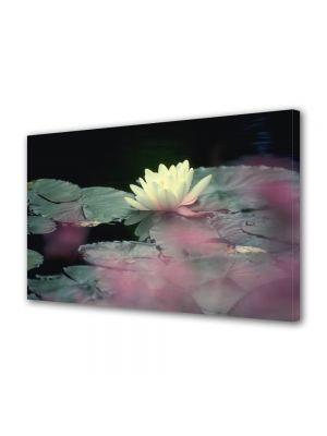 Tablou VarioView MoonLight Fosforescent Luminos in intuneric Flori Floare alba de nufar