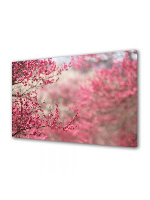 Tablou Canvas Flori Livada cu copaci infloriti