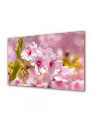 Tablou Canvas Flori Parfum de copaci infloriti
