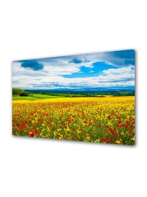Tablou Canvas Flori Camp multicolor