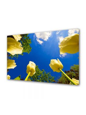 Tablou Canvas Luminos in intuneric VarioView LED Flori Lalele spre cer