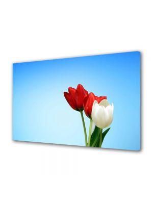 Tablou Canvas Flori Lalele speciale