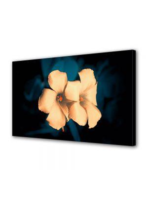 Tablou VarioView MoonLight Fosforescent Luminos in intuneric Flori Flori superbe
