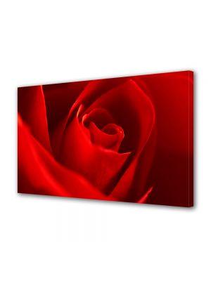Tablou VarioView MoonLight Fosforescent Luminos in intuneric Flori Trandafir rosu superb