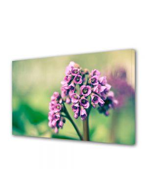 Tablou Canvas Flori Buchetel violet