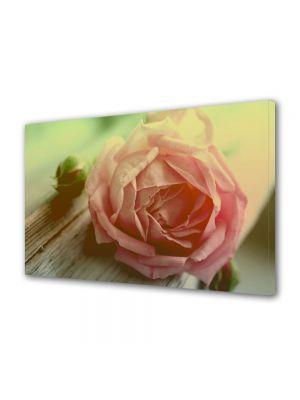 Tablou VarioView MoonLight Fosforescent Luminos in intuneric Flori trandafir roz piersica