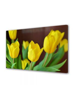Tablou Canvas Flori Lalele galbene