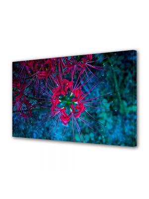 Tablou VarioView MoonLight Fosforescent Luminos in intuneric Flori Flori subacvatice