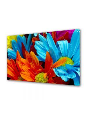Tablou Canvas Flori Flori cu colorit superb