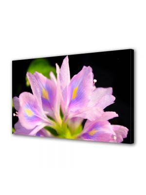 Tablou VarioView MoonLight Fosforescent Luminos in intuneric Flori Petale Violet deschis