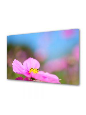 Tablou Canvas Luminos in intuneric VarioView LED Flori Floare cu nuante violet