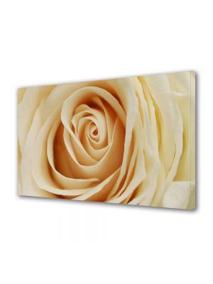 Tablou Canvas Luminos in intuneric VarioView LED Flori Inima delicata