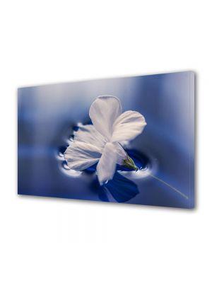 Tablou Canvas Flori Floare plutind pe apa