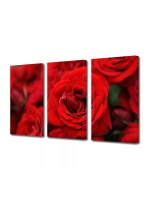 Set Tablouri Multicanvas 3 Piese Flori Buchete de trandafiri