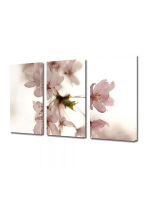 Set Tablouri Multicanvas 3 Piese Flori Floare roz japoneza