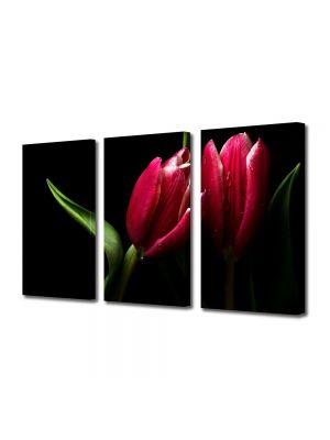 Set Tablouri Multicanvas 3 Piese Flori Lalele elegante