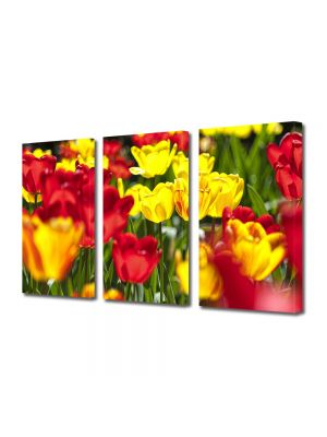 Set Tablouri Multicanvas 3 Piese Flori Flori rosii si galbene