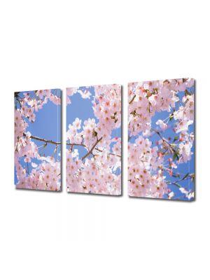 Set Tablouri Multicanvas 3 Piese Flori Ciresi japonezi infloriti