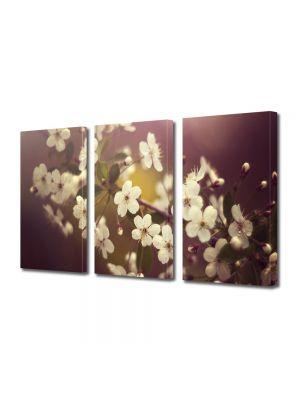 Set Tablouri Multicanvas 3 Piese Flori Crenguta alba