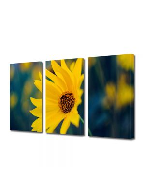 Set Tablouri Multicanvas 3 Piese Flori Floricica galbuie