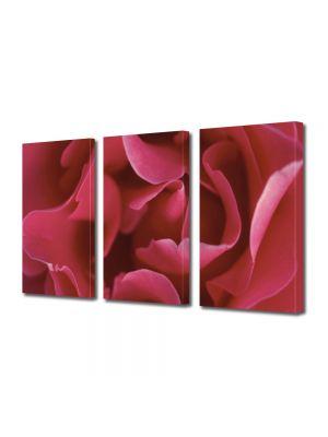 Set Tablouri Multicanvas 3 Piese Flori Petale subtirele